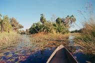 Delta Okabango, Botswana, Africa